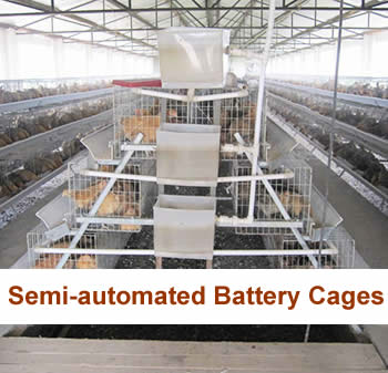 Semi-automated Battery Cages, Drinkers, Feeders, Debeaker Machines, Pluckers, Chicken Fingers, Transportation Crates, Automatic Injectors, Temperature monitor, Feed Milling Machines